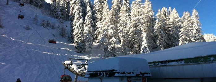 Axamer Lizum is one of Best Ski Areas.