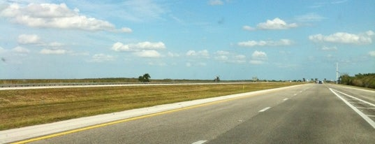 Alligator Alley is one of All-time favorites in United States.