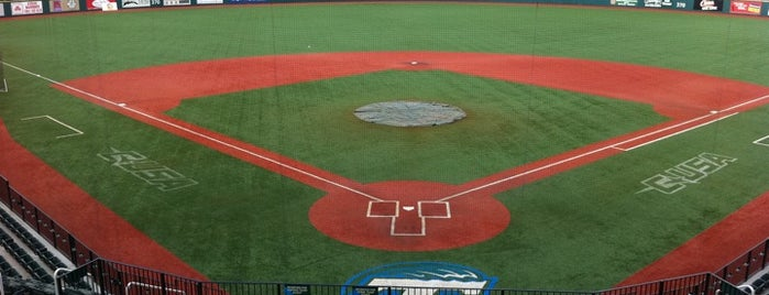 Greer Field at Turchin Stadium is one of New Orleans Recs.