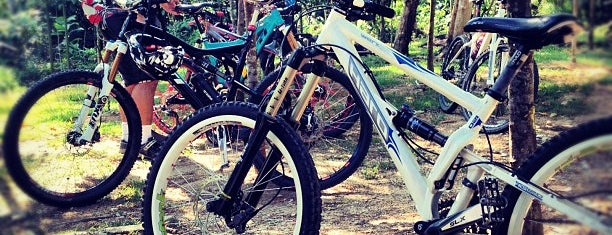 Kiara Park Trail And Mountain Bike Track is one of สถานที่ที่ Rahmat ถูกใจ.