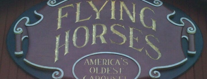 Flying Horses Carousel is one of Martha's vineyard.