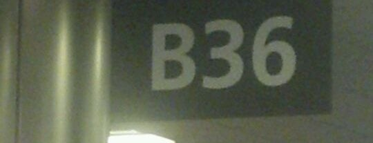 Gate B36 is one of Airports.