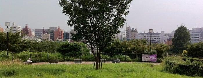 Saigoyama Park is one of Lugares guardados de nokoribi365.