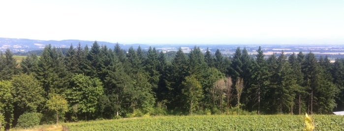 Torii Mor Winery is one of Dundee Hills AVA Wineries.