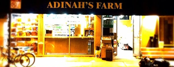Adinah's Farm is one of Places that sell Porkslap Pale Ale.