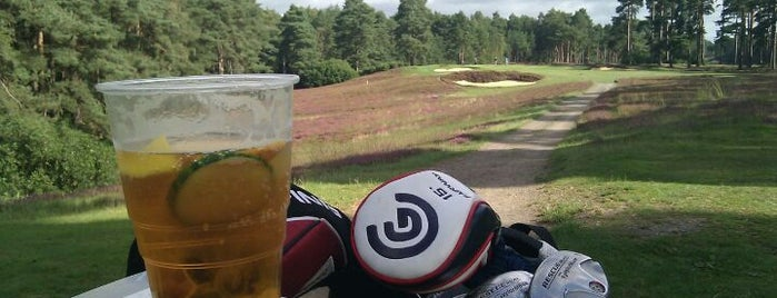 Swinley Forest Golf Club is one of Lugares favoritos de Mike.