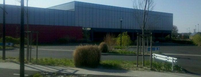 Gymnase Du Souchais is one of สถานที่ที่ Wilhelm ถูกใจ.