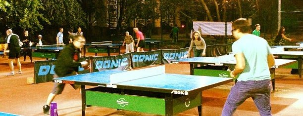 Настольный теннис в Нескучном саду is one of местечки.