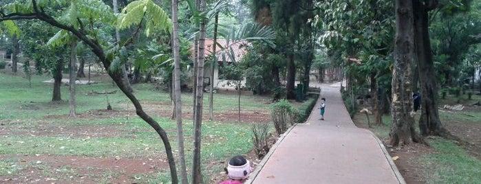 Taman Hutan Tebet is one of Go Green Jakarta.