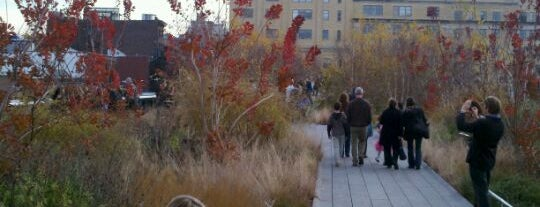 High Line is one of Must See Meatpacking.