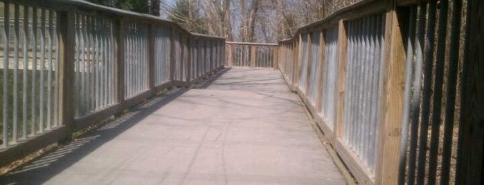 Lake Crabtree Lake Trail (Weston Parkway Bridge Entrance) is one of Must-Visit Hiking/Running Trails.