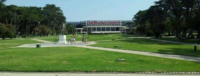 Jardins do Casino is one of สถานที่ที่ Rania ถูกใจ.