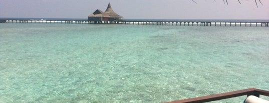 Naladhu Resort Maldives is one of Maldives - The Sunny Side of Life.