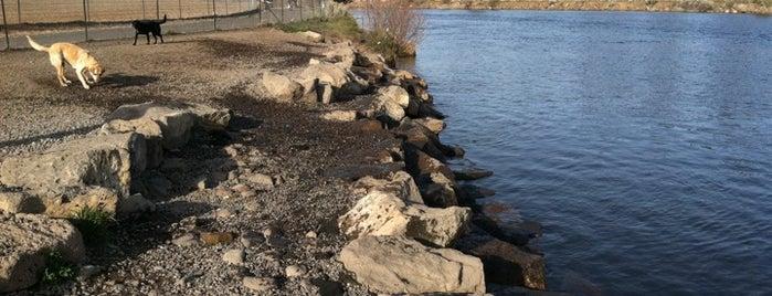Riverbend Dog Park is one of Bend, Oregon.