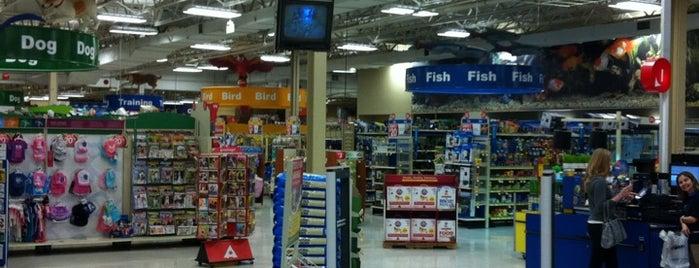 PetSmart is one of Lugares favoritos de Keisha.