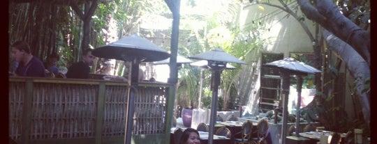 LA patio/outdoor