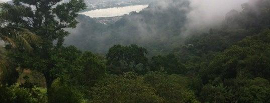 Parque Nacional da Tijuca is one of Rio de Janeiro's best places ever #4sqCities.