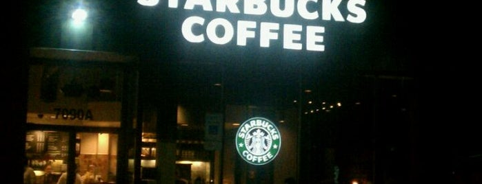 Starbucks is one of Coffee & Cafe's.