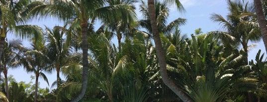 Tiki Bar Inn at Key West is one of Key West.