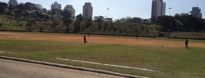 Pista de Atletismo is one of สถานที่ที่ Fernanda ถูกใจ.