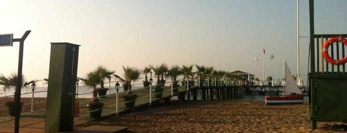 Delphin Palace Beach is one of Tempat yang Disukai Danil.