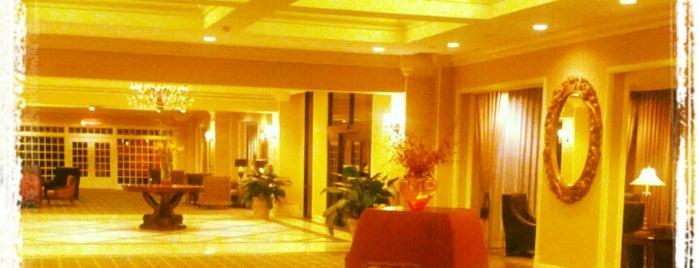 Hilton is one of Orte, die Adrienne gefallen.