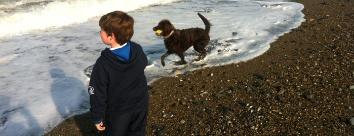 Greystones Beach is one of Somebody Feed Phil.