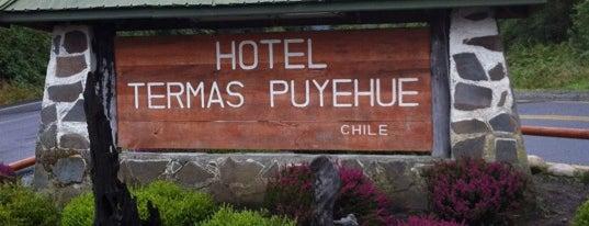 Hotel & Resort Termas de Puyehue is one of สถานที่ที่ Eduardo ถูกใจ.