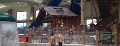Grizzly Rob's Bar at Great Wolf Lodge is one of Mason Lodge.