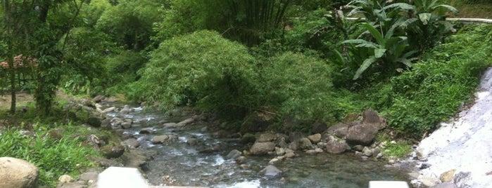 Rivière l'Alma is one of Forêts, lieux de balade en nature en Martinique.