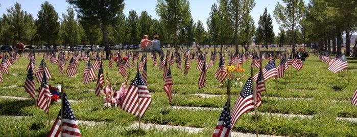 Southern Nevada Veterans Memorial Cemetery is one of Orte, die Mike gefallen.