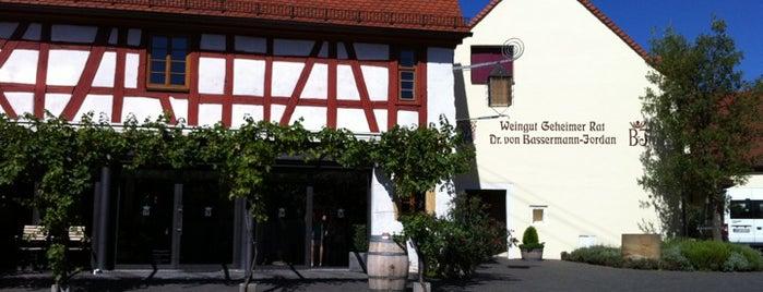 Weingut Geheimer Rat Dr. von Bassermann-Jordan is one of Patricia: сохраненные места.
