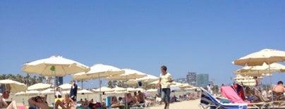 Vai Moana Beach Bar is one of Chiringuitos de Barcelona.