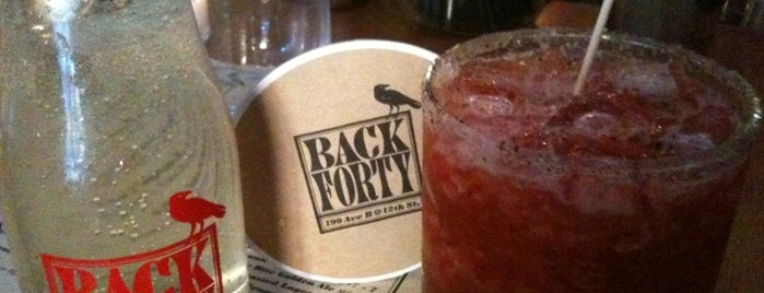 Back Forty is one of Favorite food below 14th.