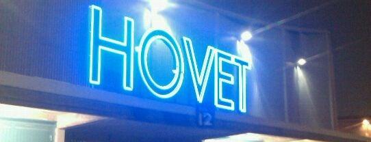 Hovet is one of Tempat yang Disukai Johan.