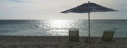 Bucuti & Tara Beach Resort is one of poopy.