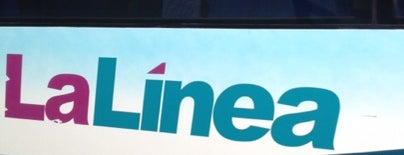 La Linea Plus is one of Locais curtidos por J. Alberto.