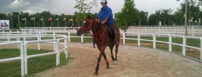 Denai Alam Recreational & Riding Club (DARC) is one of Attraction Places to Visit.