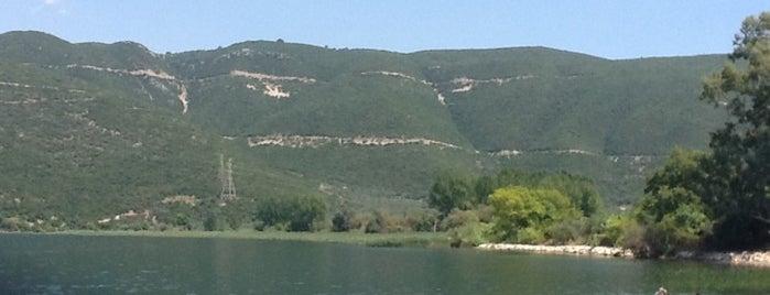 Λίμνη Τριχωνίδα is one of Orte, die Vasilis gefallen.