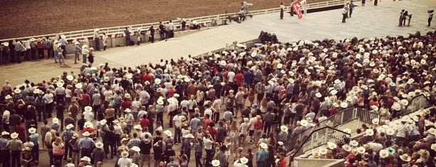 Stampede Grandstand is one of Lieux qui ont plu à Leigha.