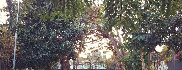 Bosque dos Pássaros is one of Já Fui.