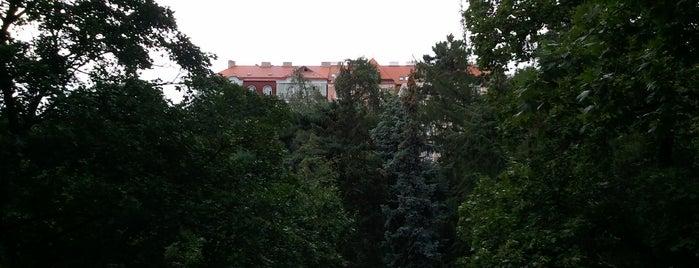 Havlíčkovy sady (Grébovka) is one of Favorite spots in Prague.
