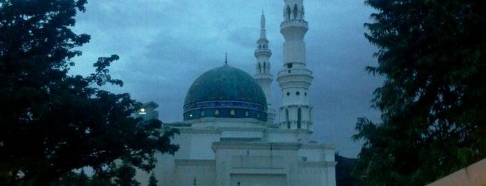Masjid Al-Bukhary (مسجد البخاري) is one of Lieux qui ont plu à Rahmat.
