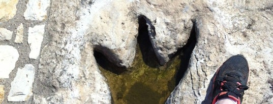 Dinosaur Valley State Park is one of 101 Places to Take Your Family in the U.S..