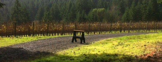 Anderson Family Vineyard is one of Dundee Hills AVA Wineries.