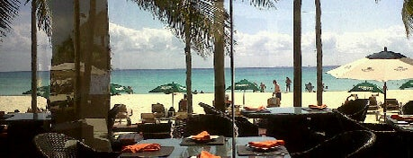 Wicky's is one of Cancun Gourmet Premium Members.