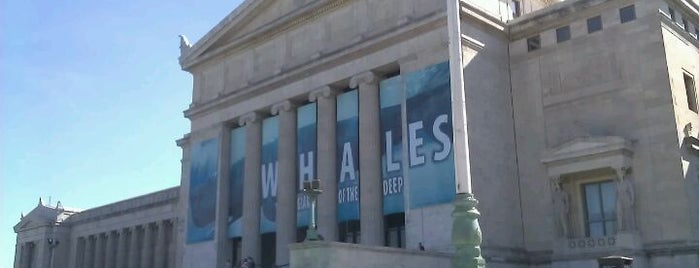 The Field Museum is one of Must-visit in Chicago.