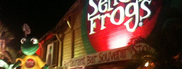 Señor Frog's is one of Cancun Zona Hotelera De Noche.