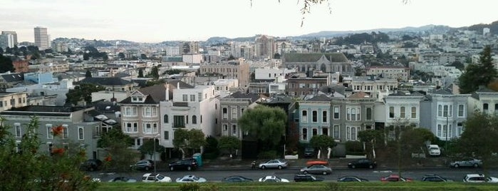 Alta Plaza Park is one of SF City Guides Tours of San Francisco.