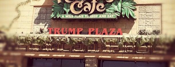 Rainforest Cafe is one of Lugares favoritos de Mario.